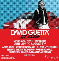 DAVID GUETTA - POOL POSITION CLOSING PARTY