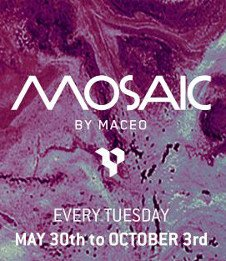MOSAIC BY MACEO OPENING PARTY