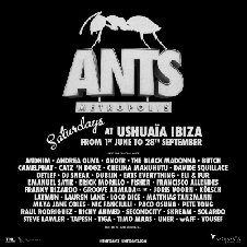 ANTS OPENING PARTY